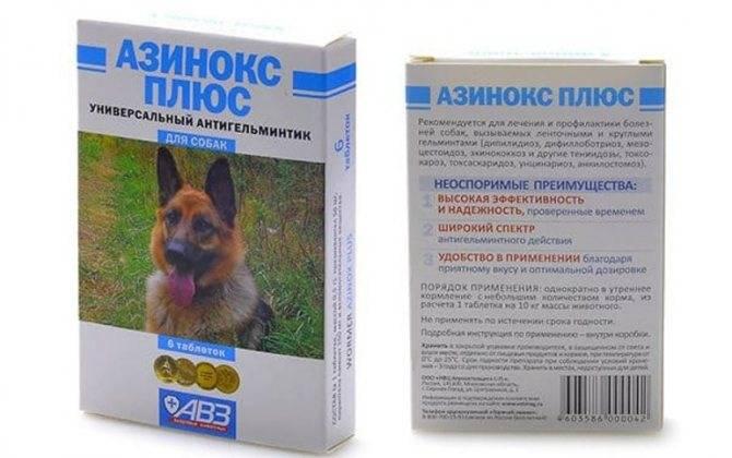 Азинокс для человека - механизм действия, инструкция по применению и аналоги