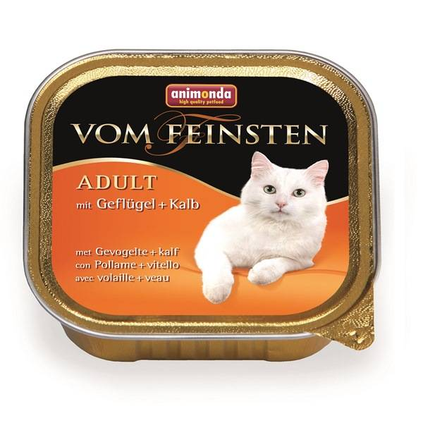 Monge - итальянский сухой и влажный корм для котят и взрослых кошек