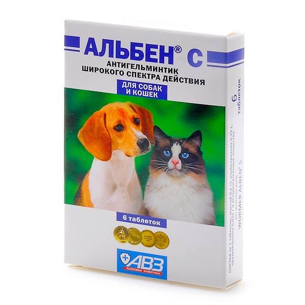 Альбен с для лечения кошек и собак