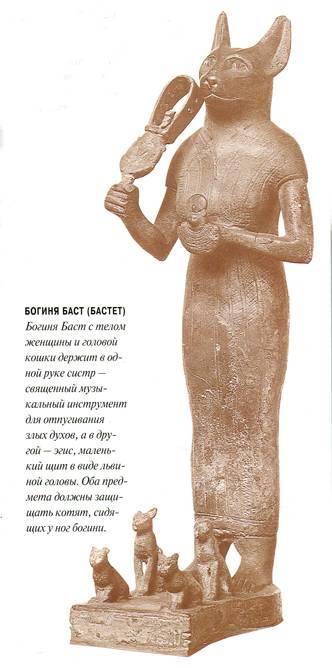 Священное животное древнего египта. почитание быка, коровы, кошки, мангуста, сокола