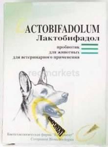 Лактобифид для кошек: описание, инструкция по применению, показания и противопоказания, аналоги, отзывы