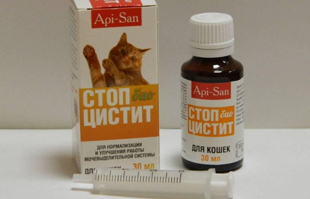 Инструкция по применению таблеток стоп цистит для кошек и собак