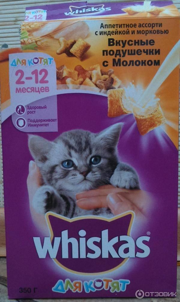 Вискас для котят и кошек: из чего делают кошачий корм, чем он вреден?