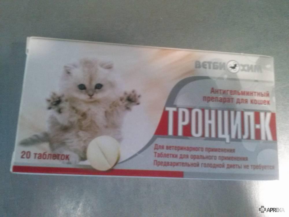 Прател для кошек