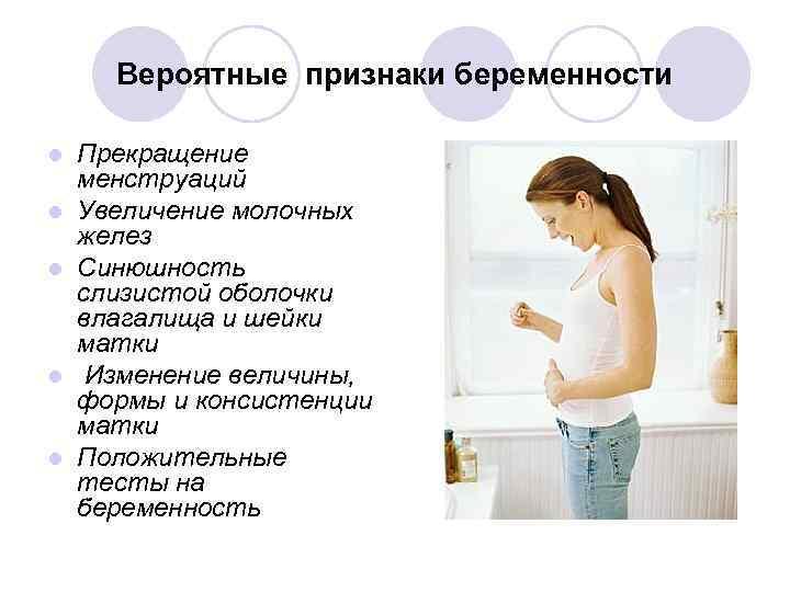 Как понять что кошка беременна: первый раз самый трудный