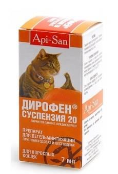 Дирофен для взрослых кошек и маленьких котят (таблетки, суспензия, паста): как давать препарат, инструкция