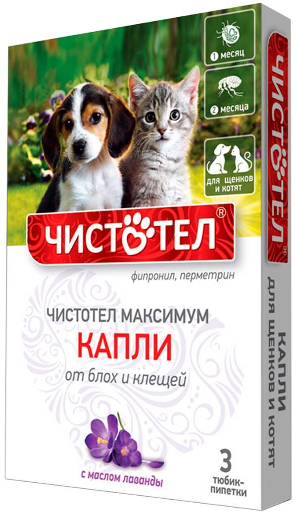 Чистотел от блох и клещей для кошек: инструкция по применению и аналоги