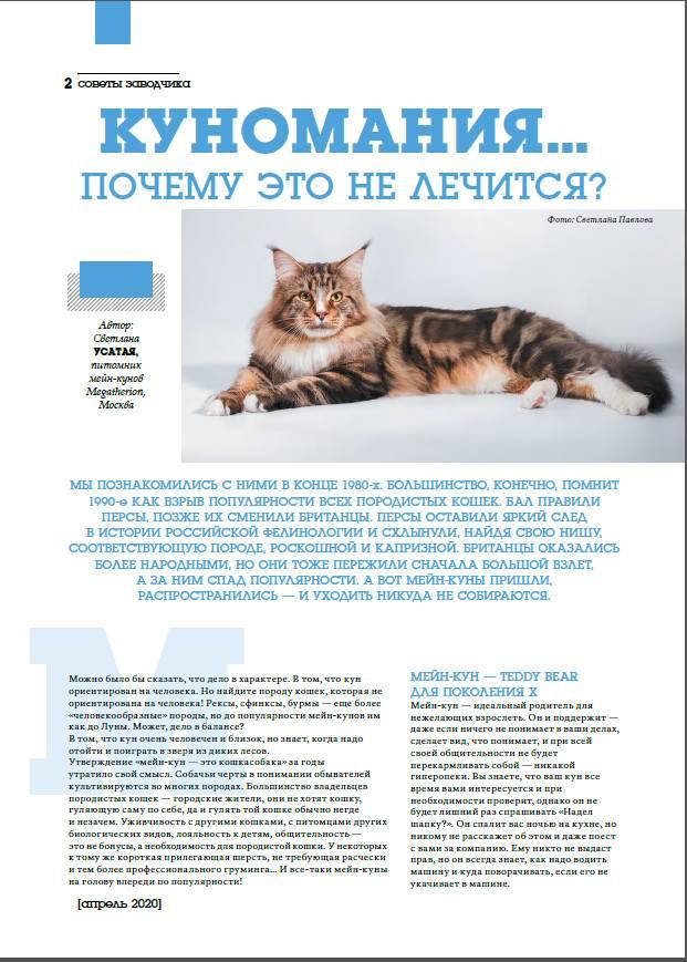 Прививки и вакцины котятам сфинксов