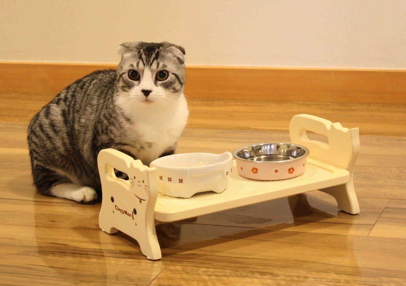 Почему кошка не ест только пьет воду и спит и что делать?