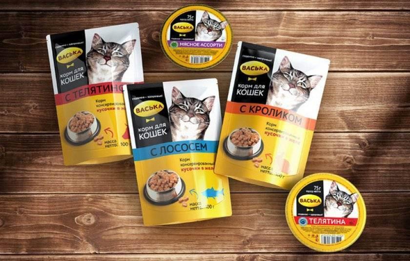 Рейтинг качественных кормов холистик класса для кошек 2020