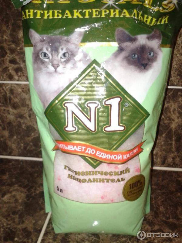 Котенок ест наполнитель для туалета - что делать - kotiko.ru