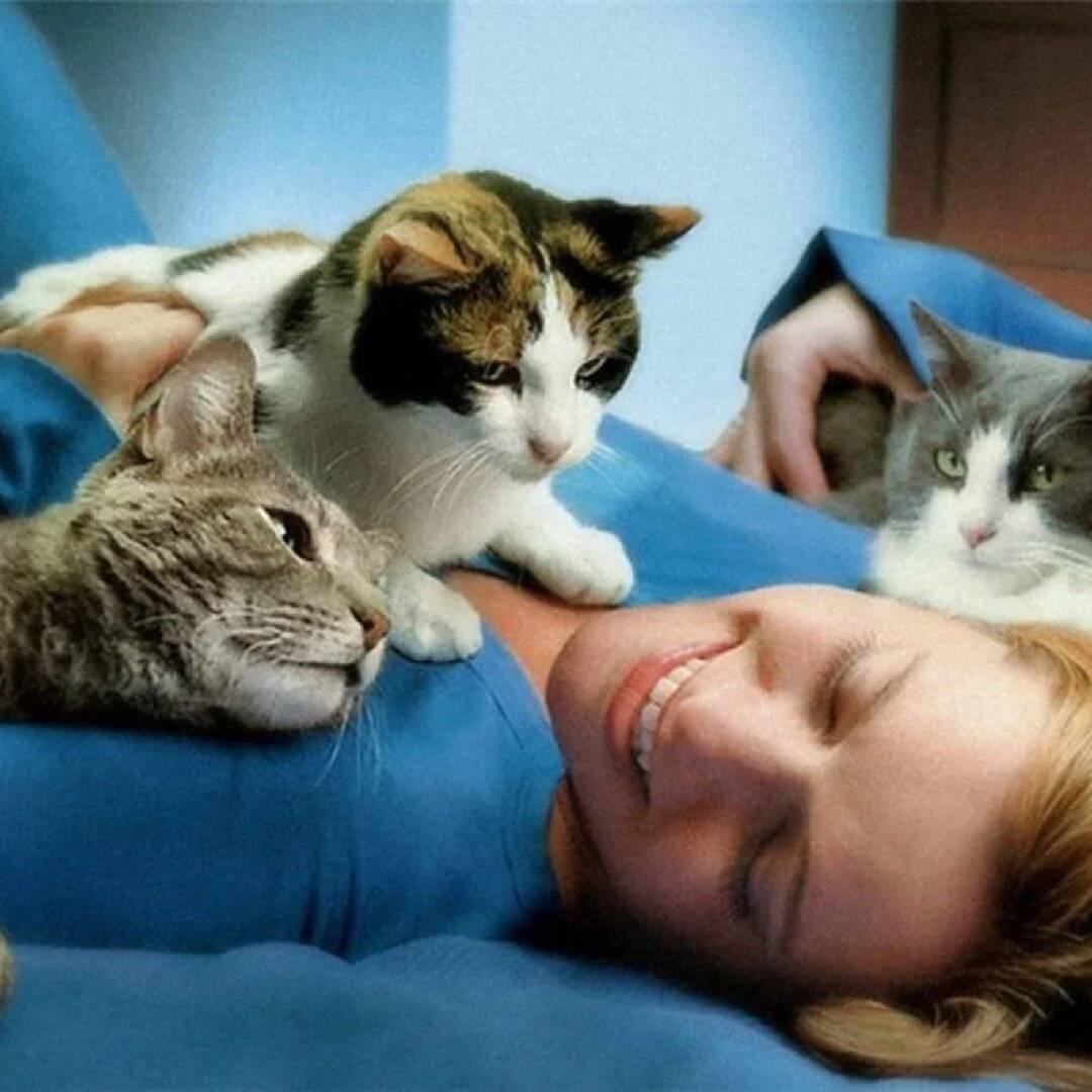 Зачем кошки мнут лапами человека