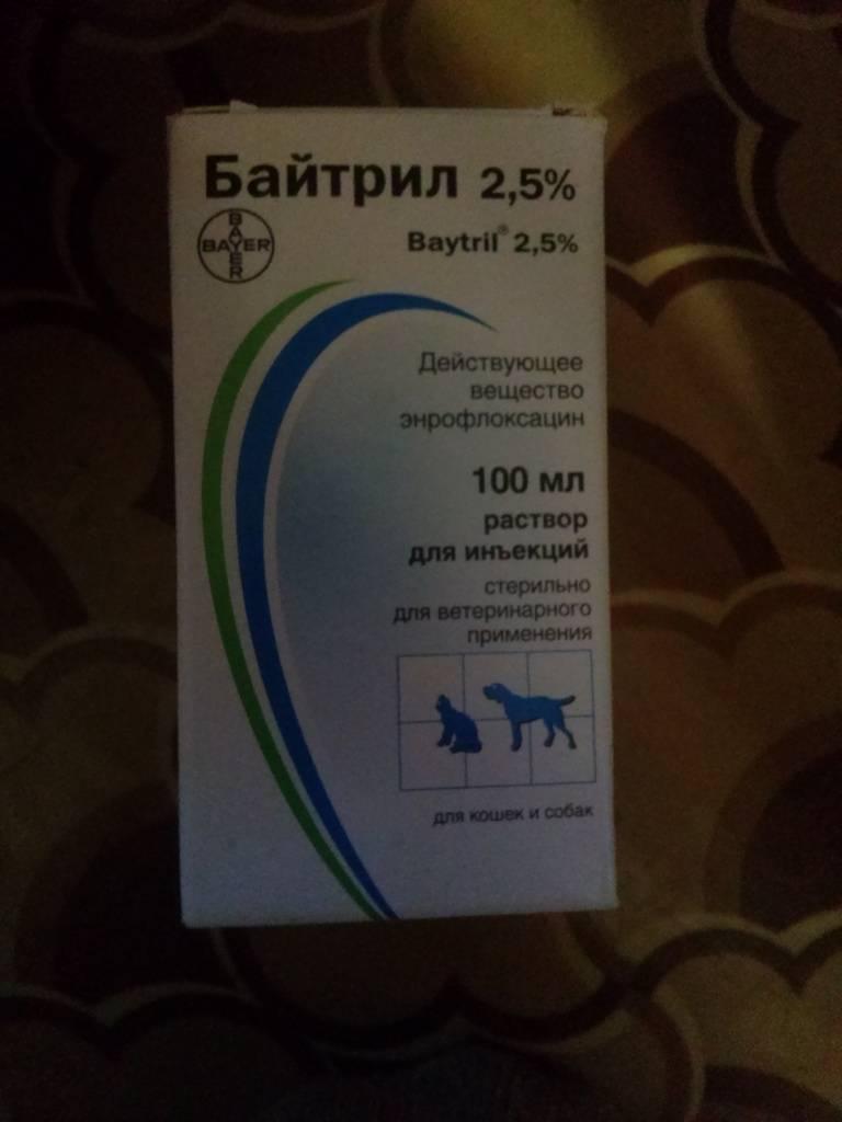 Байтрил: инструкция по применению в ветеринарии, назначение и передозировка, список аналогов