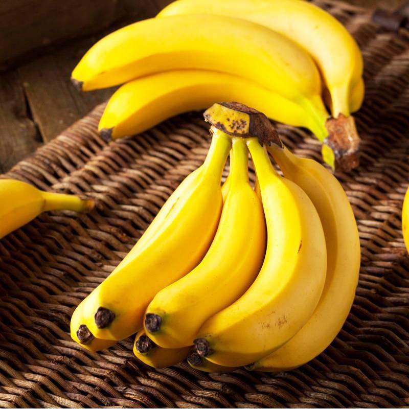 Почему коты боятся огурцов и бананов