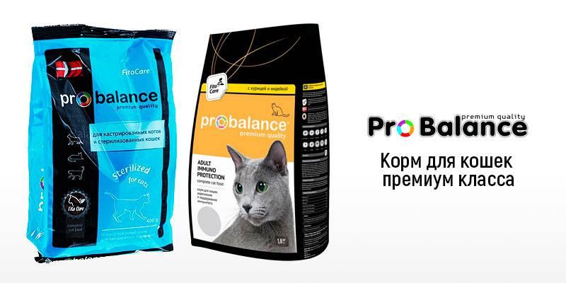 Probalance (пробаланс) - корм для кошек: цена, отзывы, состав