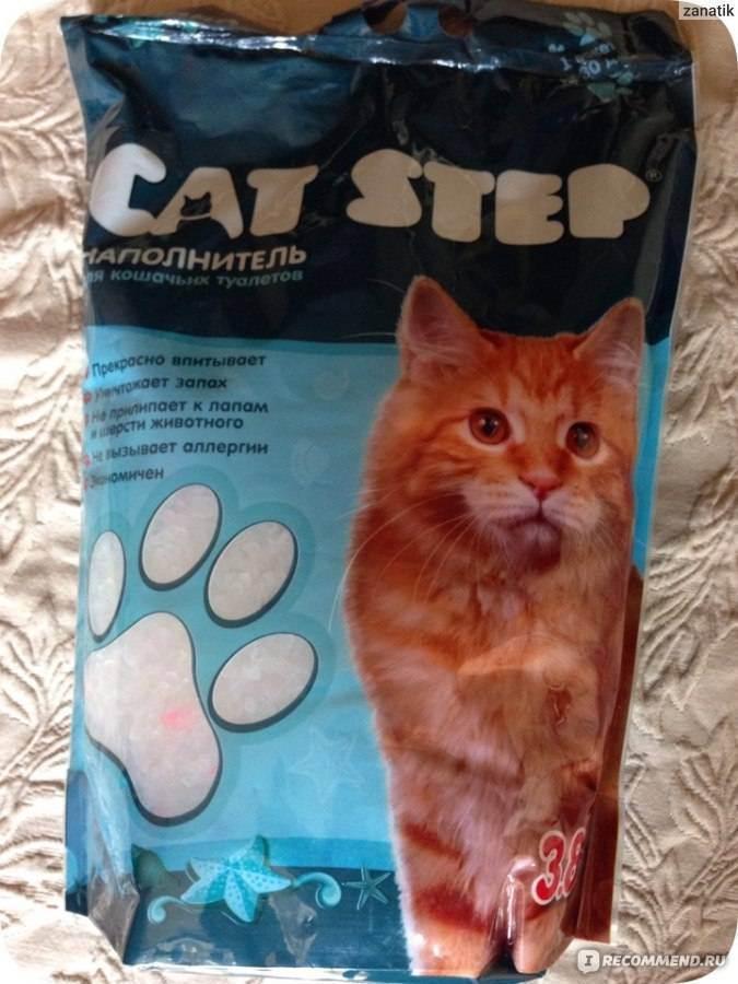 Как правильно наполнять кошачий лоток с решеткой — знакомим с вопросом