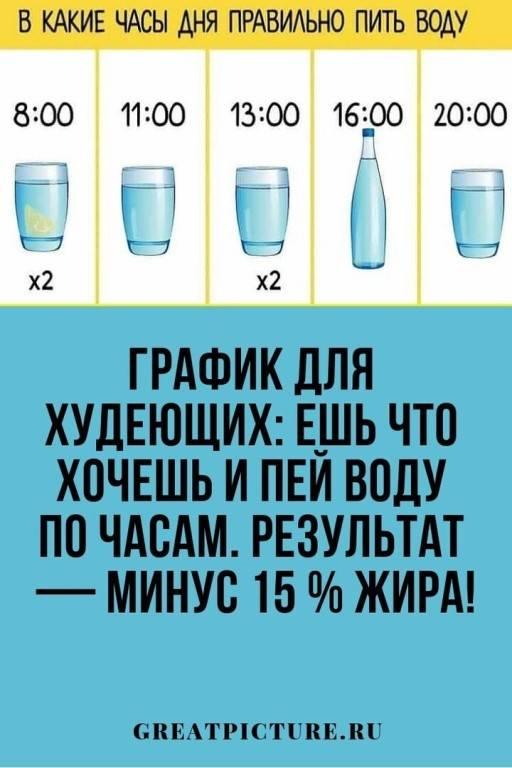 Сколько кот должен пить воды в день | сколько может прожить
