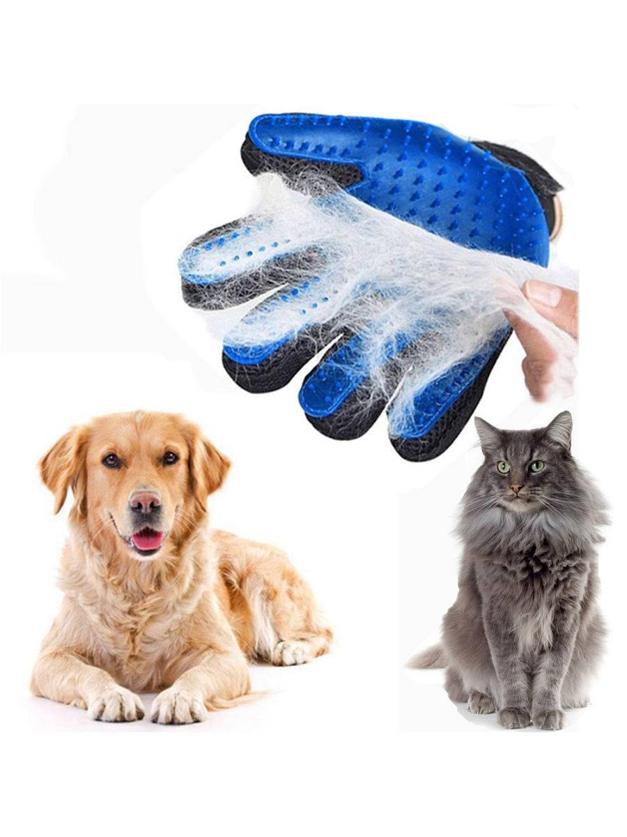 Расчески для кошек, виды: пуходерки, рукавицы, щетки, как выбрать подходящий аксессуар для вычесывания питомца