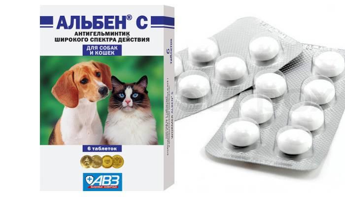Альбен для кур: обзор препарата, основные характеристики и применение для разных категорий кур