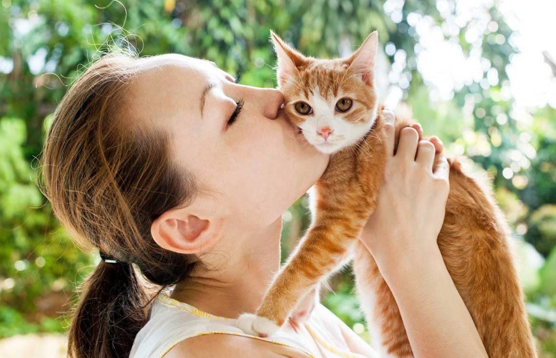 Айлурофилия (патологическая привязанность к кошкам) - причины