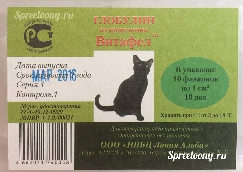 Сыворотка глобфел для кошек
