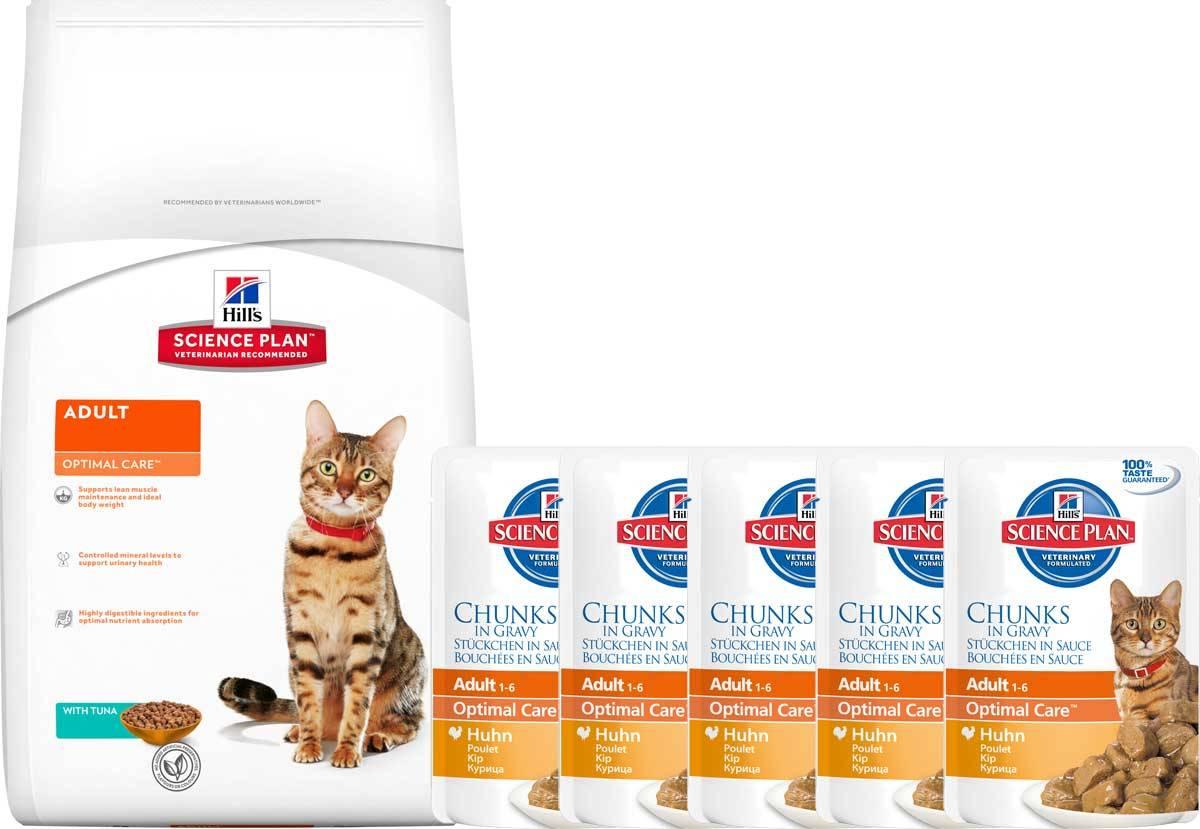 Можно ли взрослым кошкам давать корм для котят