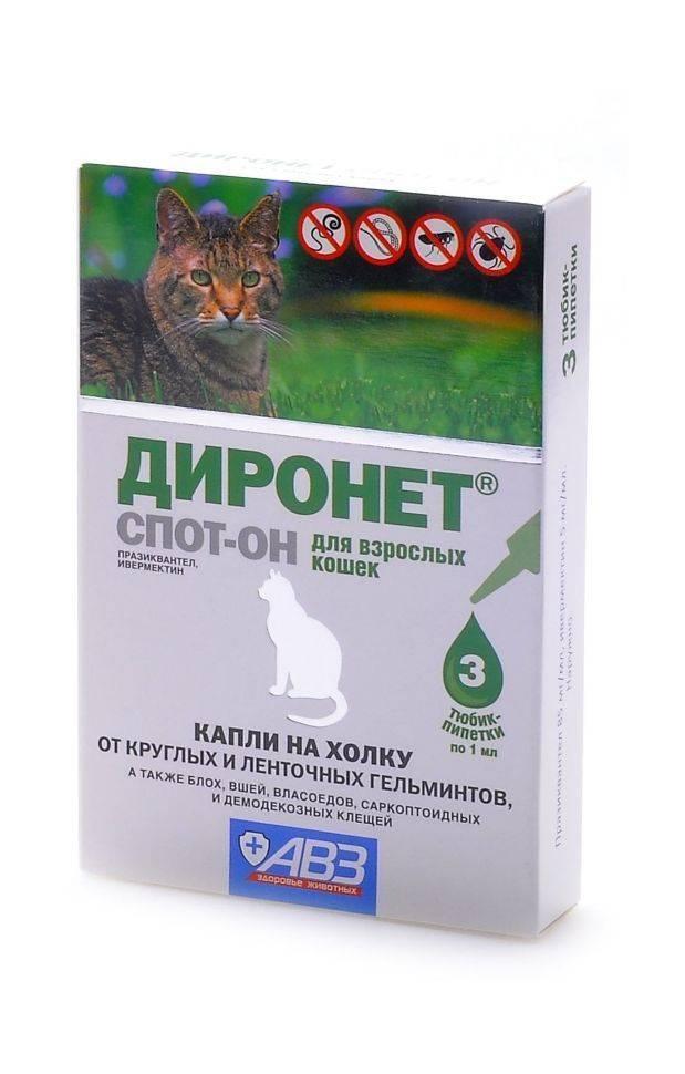 Инструкция по применению препарата Диронет Спот он для кошек