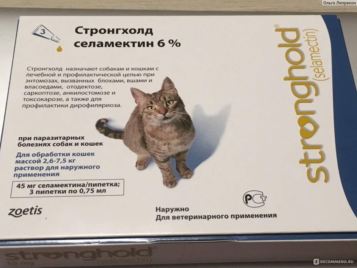 Цестал для кошек: инструкция по применению таблеток от глистов у котят и взрослых питомцев