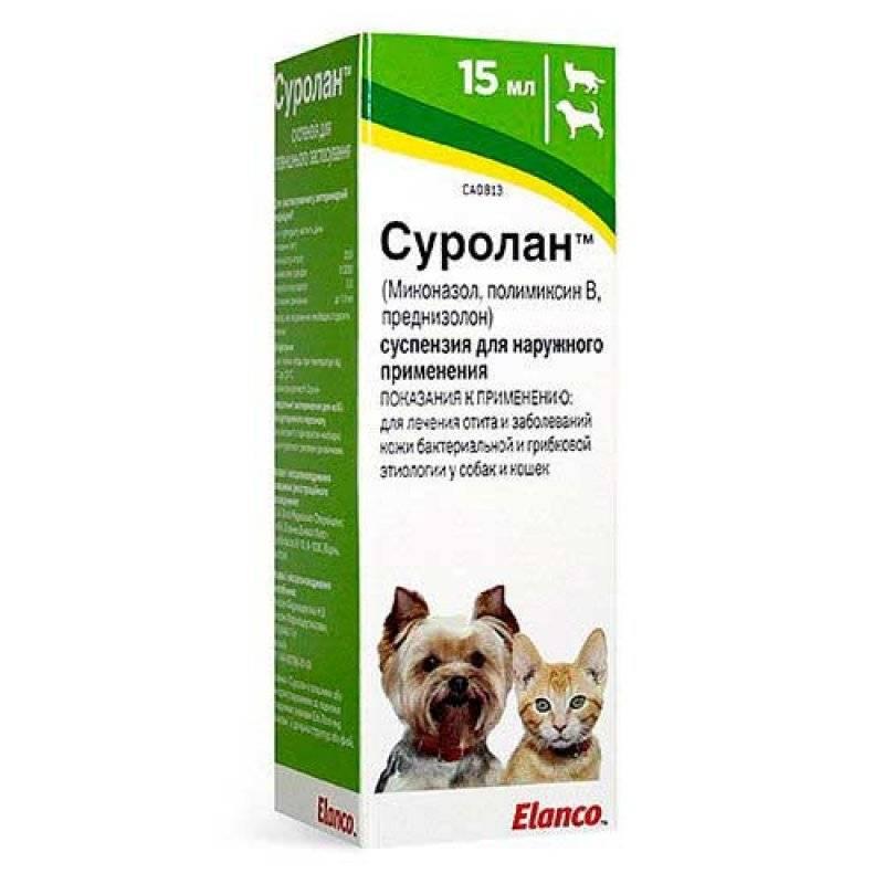 Стоп-зуд суспензия для кошек: инструкция, отзывы | спрей, цена