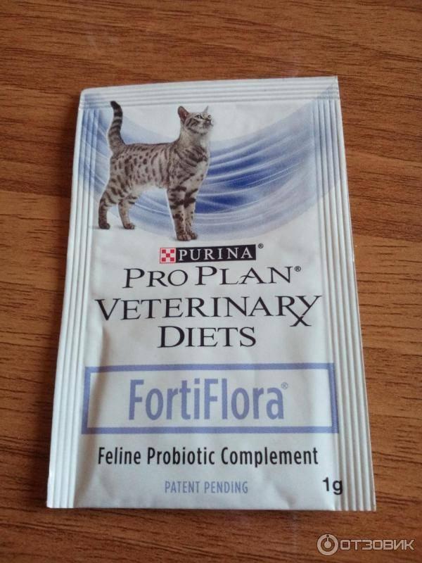 Как долго давать форти флора котенку. фортифлора для кошек и собак: инструкция по применению