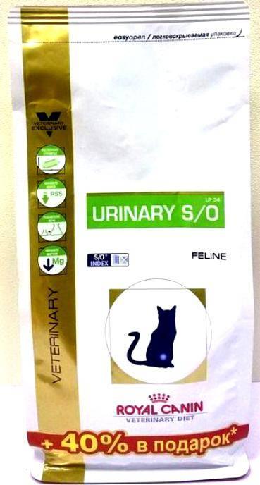 Натуральное питание для кошей при мочекаменной болезни