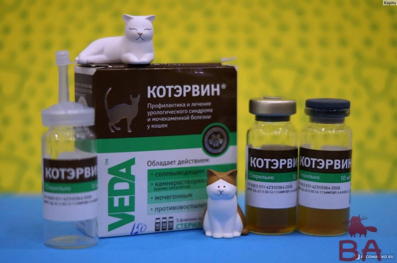 Ветеринарный препарат фоспренил: инструкция и особенности применения