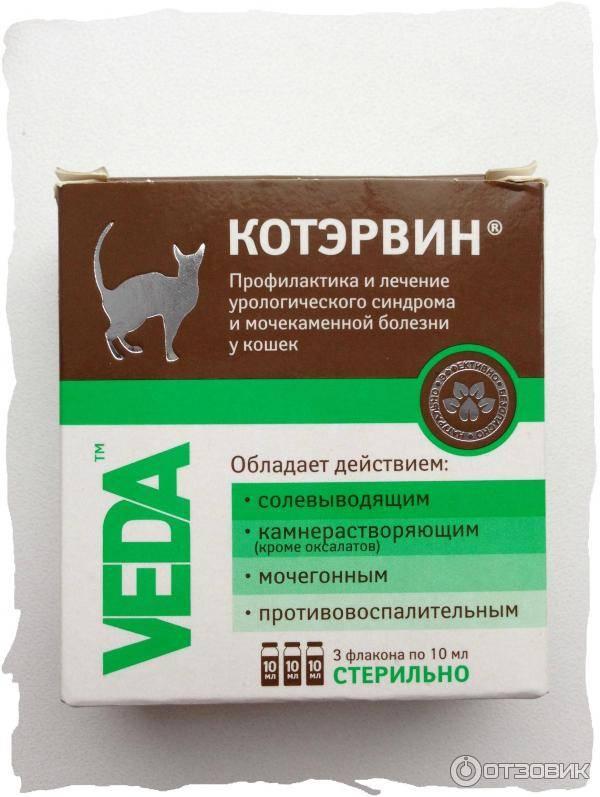 Лечебные корма для кошек при мочекаменной болезни