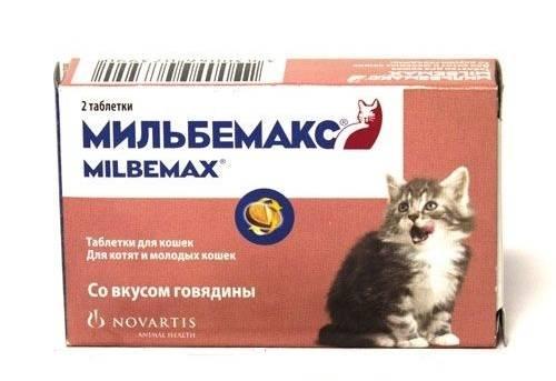 Мильбемакс для щенков: инструкция и особенности применения
