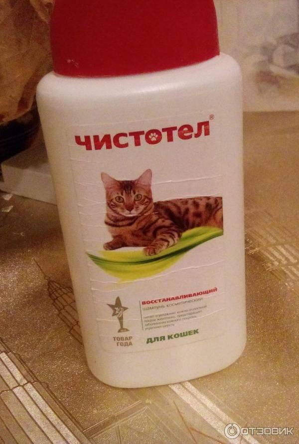 Чистотел (шампунь от блох и клещей) для кошек и собак | отзывы о применении препаратов для животных от ветеринаров и заводчиков