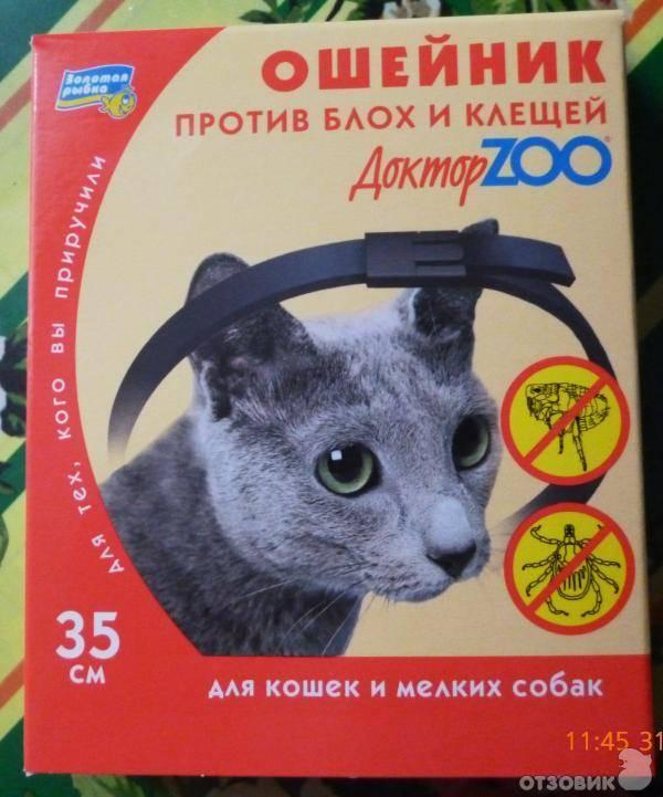 Как действует ошейник от блох для кошек