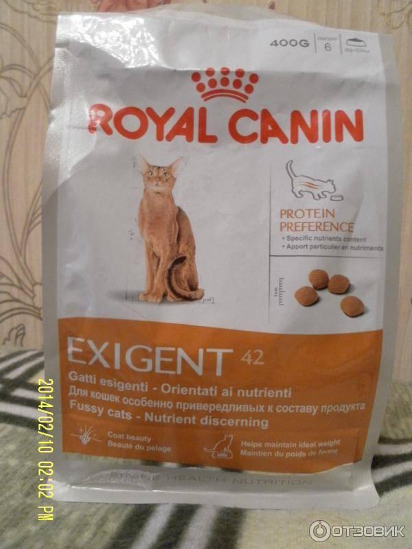"""Какой корм лучше: """"проплан"""" или """"роял канин""""? состав, качество и рекомендации ветеринаров"""
