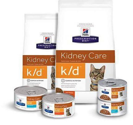 Почечная недостаточность у кошек: симптомы, лечение, питание.