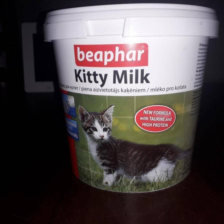 Заменители молока: лучшие альтернативы молочным продуктам - satori