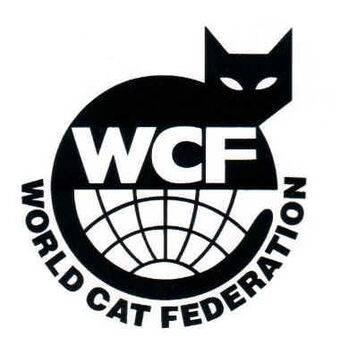 Выставки кошек: выставочные классы wcf, правила получения титулов