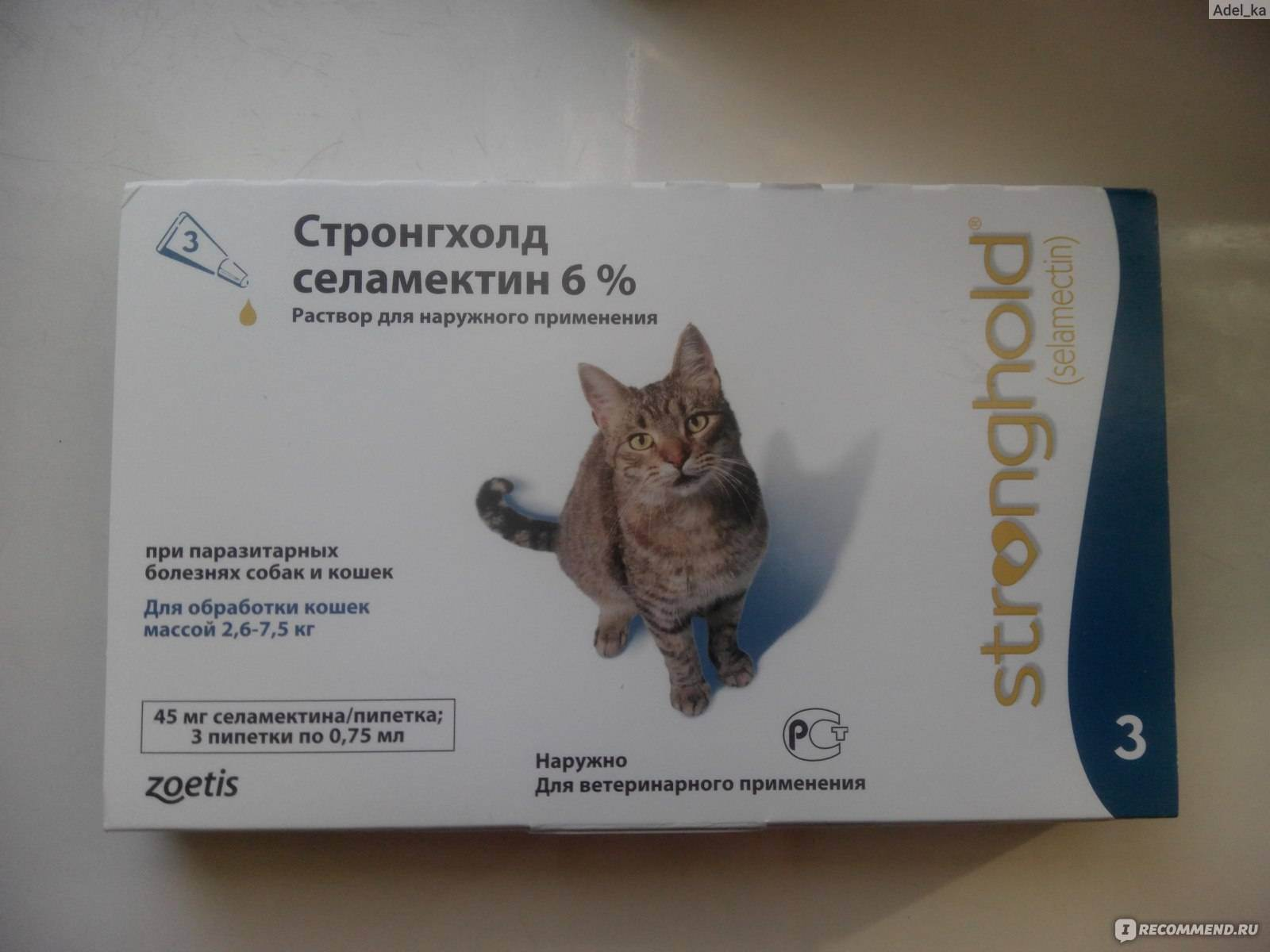 Как давать кошкам стронгхолд