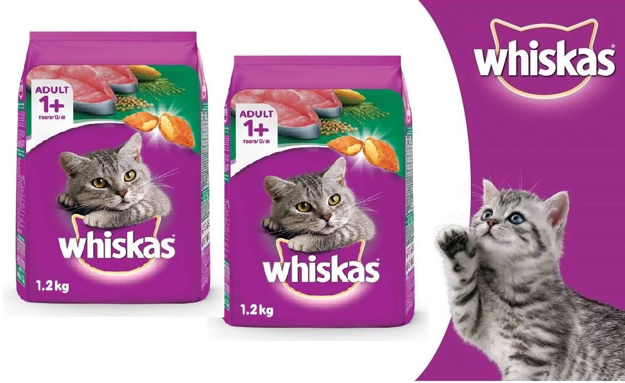 Вискас для кошек: отзывы ветеринаров и потребителей о корме