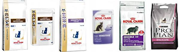 Как лечить кишечник у котов