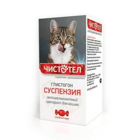 Глистогонное для кошек: обзор лучших препаратов