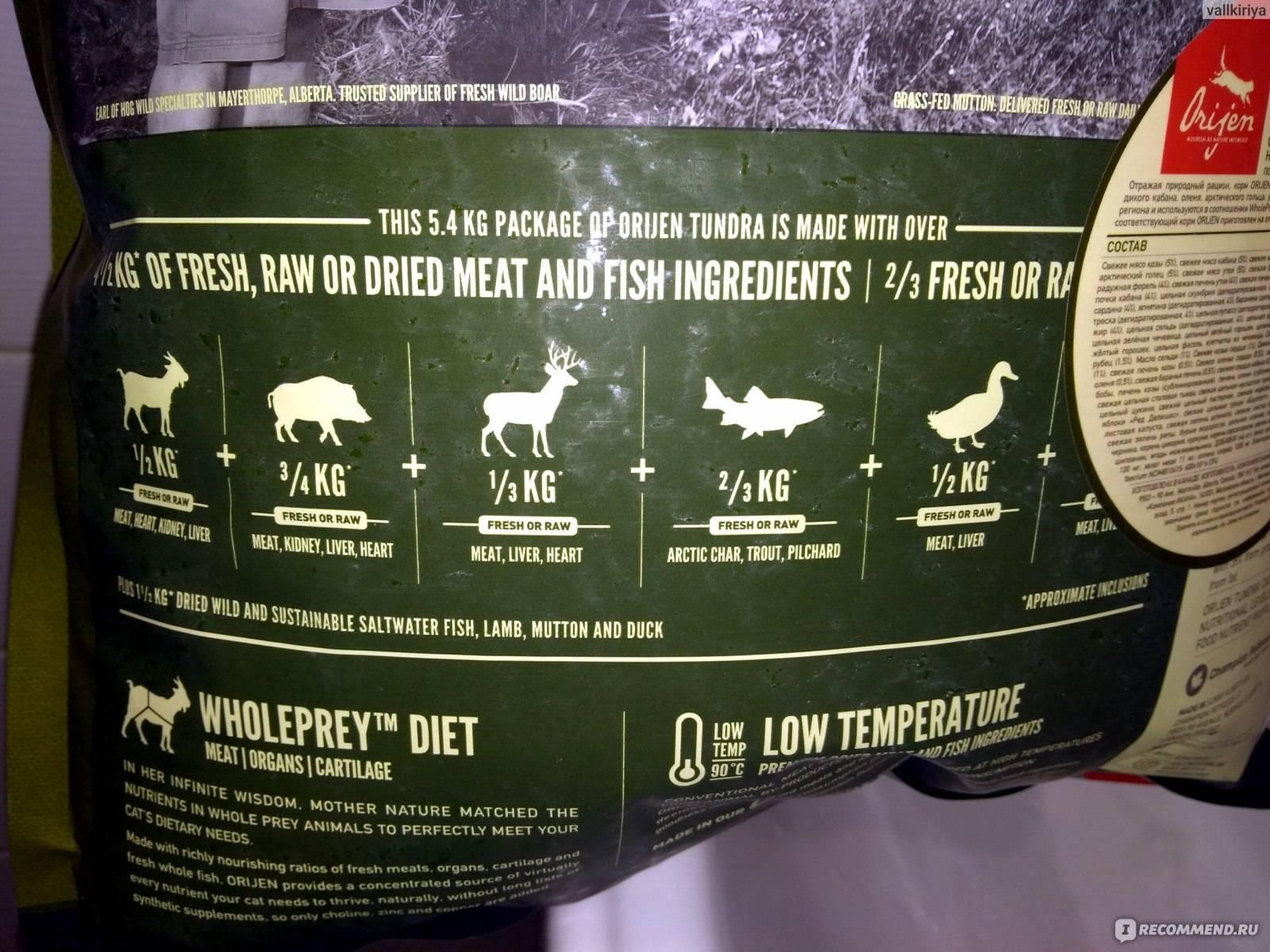 Orijen cat six fish grain free - рейтинг, обзор корма, сравнение и анализ orijen cat six fish grain free, состав и описание корма, плюсы и минусы orijen cat six fish grain free, отзывы о корме, характеристика и дозировка
