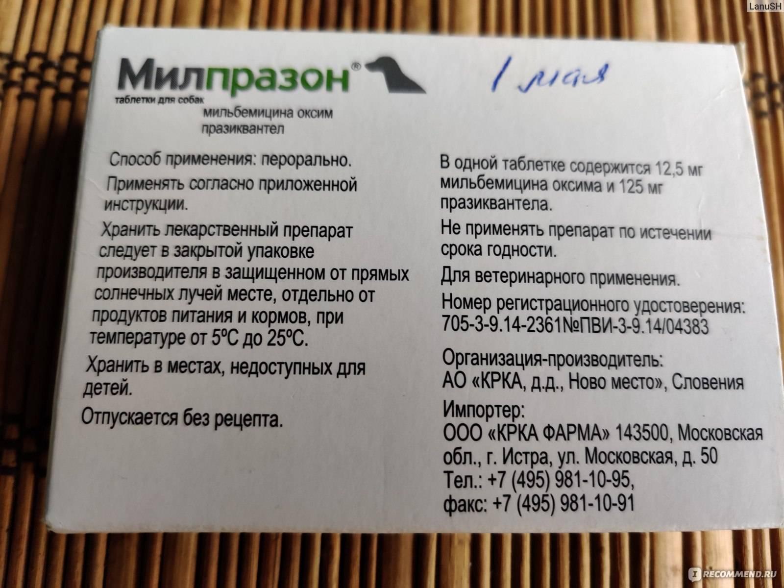 Таблетки от глистов «милпразон» для кошек: описание, инструкция по применению