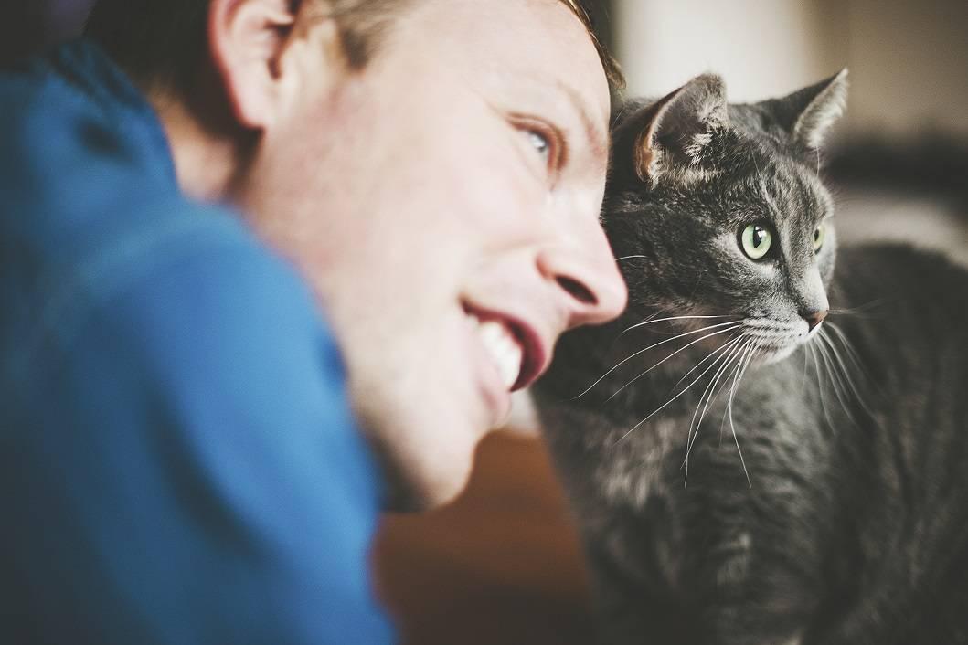 Почему кошка трется об человека: причины, есть ли вред