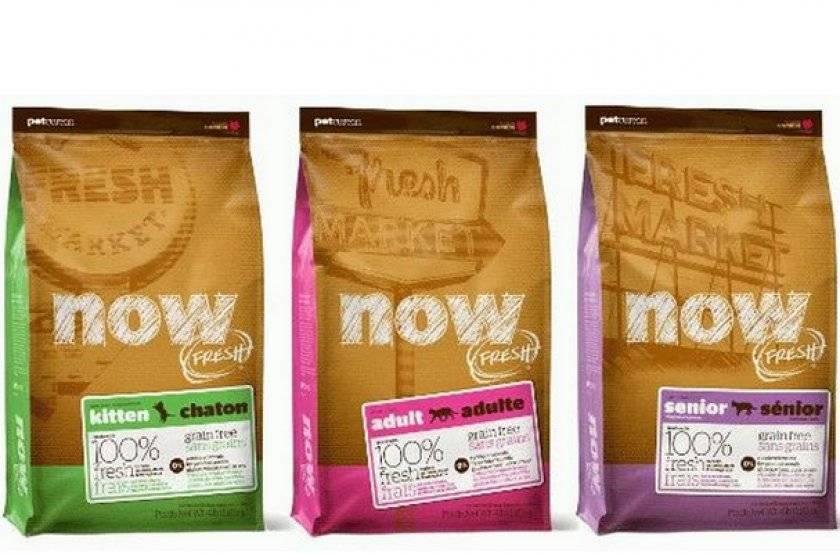 Now fresh корм для кошек: обзор линейки и состав