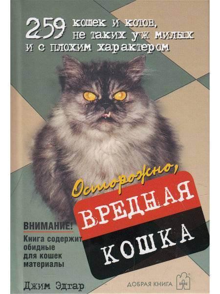 Вредные привычки кошек - животные и природа