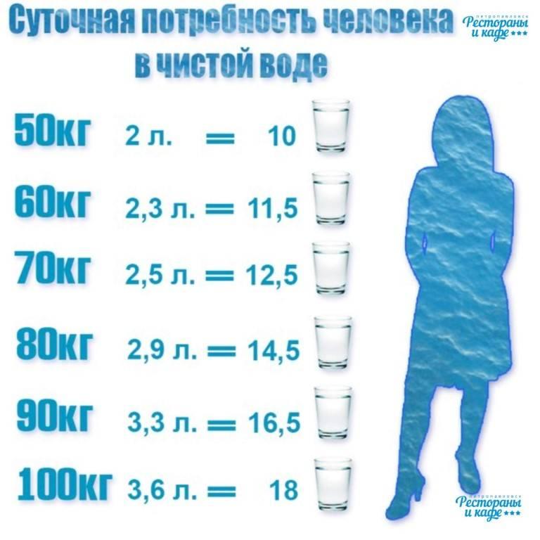Сколько воды пьют кошки